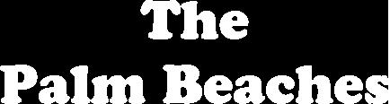 PBG Moke The Palm Beaches